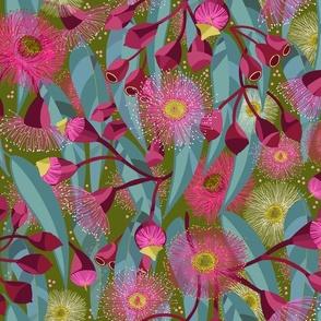 Eucalyptus Bloom