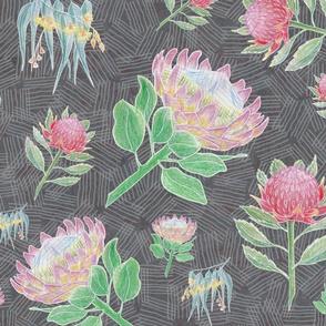 Australian Floral Bounty