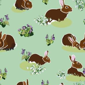 green_brown_rabbit_01_seaml_stock