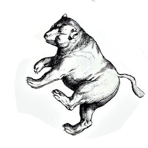Dancing Bears Cat Toy