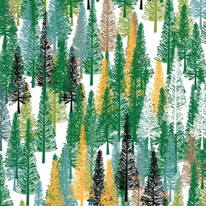 Cook Pine Forest Green