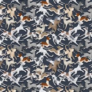 Blue Sighthounds