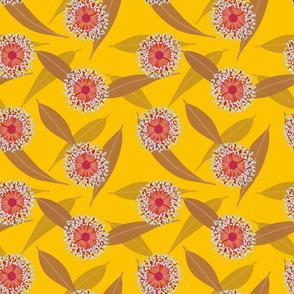 Australian Flora Sunshine