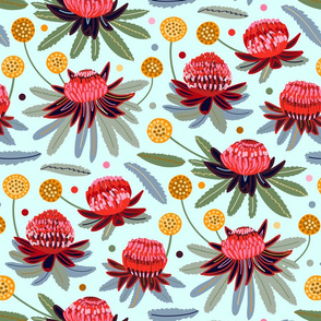 Waratahs & Craspedia (Mint) (Large Version)