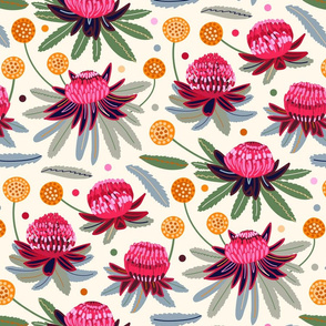 Waratahs & Craspedia (Cream) (Large Version)