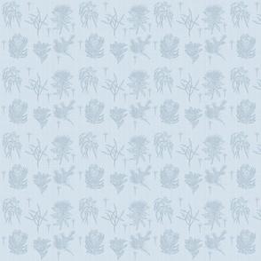 australian flora blue bakgd