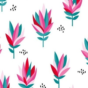 Tropical Australian summer beach lovers flower surf garden botanical protea abstract sugarbushes white red pink