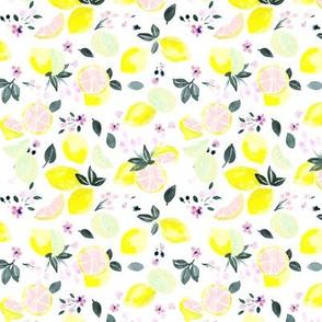citrus + flowers - pink lemonade S