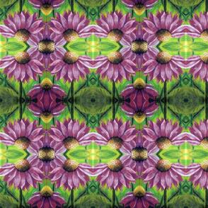 purpleconeflower__2_