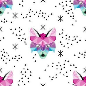 Rainbow Geometric Fox