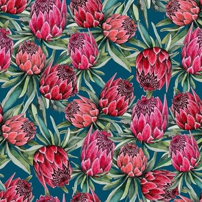 protea flowers on navy