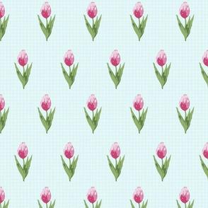"""Tulips Alice (2"""")"""