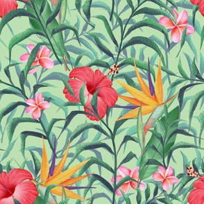 Pattern with hibiscus