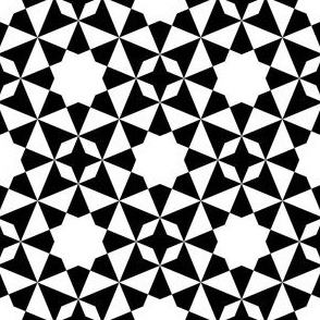 08756687 : S84EE21E8 X : black + white