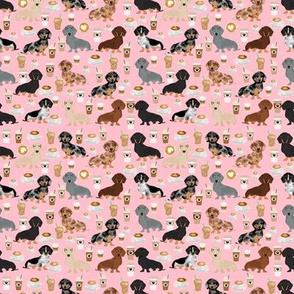 TINY - dachshund coffee fabric, coffees and lattes fabric - pink