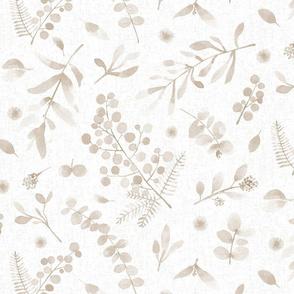 Australian native flora LARGE watercolor sunshine wattle eucalyptus beige