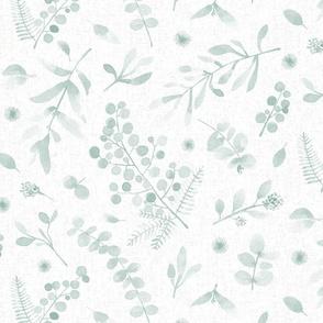 Australian native flora watercolor sunshine wattle eucalyptus teal