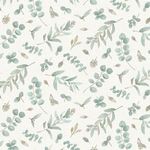 Eucalyptus leaves in watercolor beige background