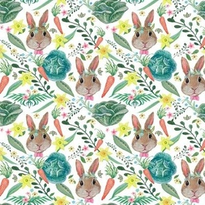 easter Rabbit & cabbage, Carrots Nursery