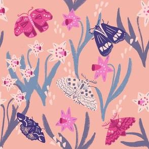 Moth and dandelion pink