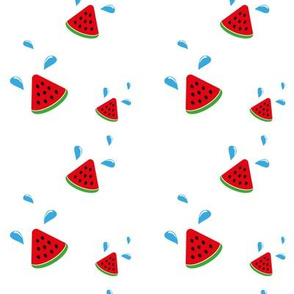 just watermellon - large scale - white bkg