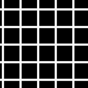 Check White on Black