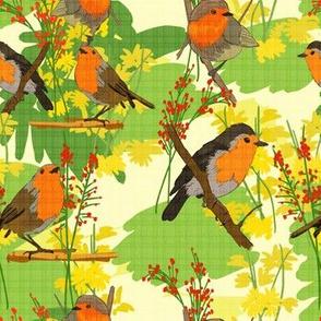 Robins at Sunset