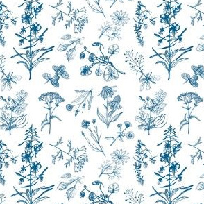 Siberian summer herbs (blue)