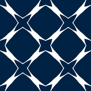 The Navy and the Orange - Navy and White Trellis