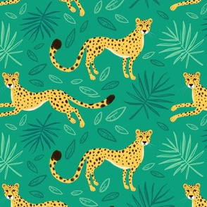 Stealthy cheetahs