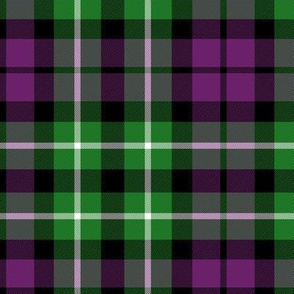 "Graham of Montrose purple variant, 6"""