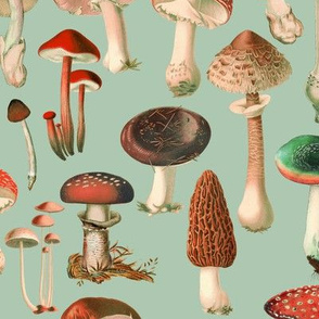 Mushies, Red and Green // large