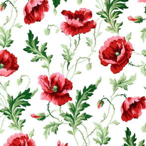 Poppies For Dorothy ~ Bright on White ~ Large