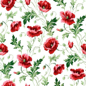 Poppies For Dorothy ~ Bright on White ~ Medium