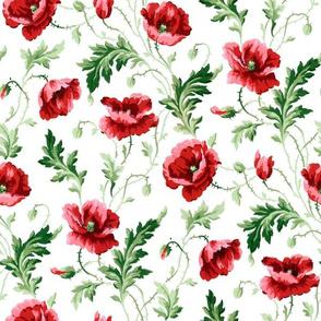 Poppies For Dorothy ~ Bright on White ~ Medium