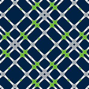 The Navy and the Green: Biased Plaid
