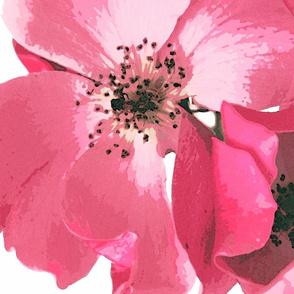 Tea roses tea towel - summer