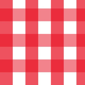 gingham lg || canada day canadian july 1st