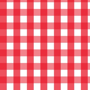 gingham med || canada day canadian july 1st