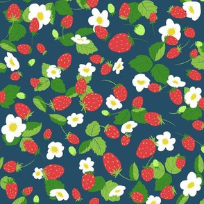 strawberry patch summer