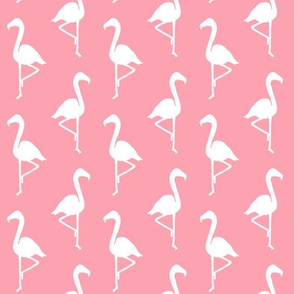 White Flamingos on Pink Small Scale
