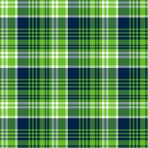 The Navy and the Green: Small Plaid