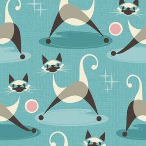 Retro Siamese Kittens at Play