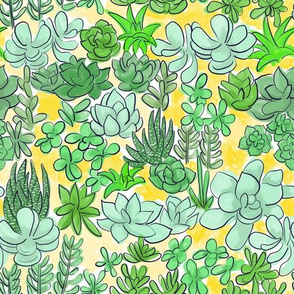 Succulent Garden Yellow