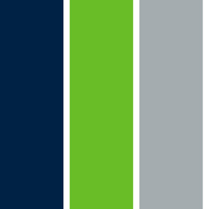 The Navy and the Green: Giant Multi Stripes - Vertical