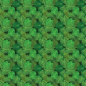Monstera vector pattern, seamless vector tropical background
