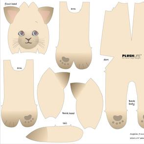 Minky siamese cat