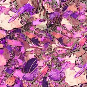 Rose Potpourri in Purple and White