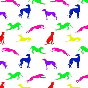 Greyt Greyhound Jumble - Bright on White