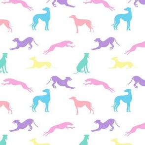 Greyt Greyhound Jumble - Pastel on White